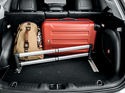 Bags, car organizers and cargo nets