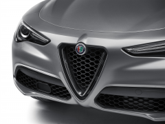 Front Grille With Glossy Dark Miron Insert