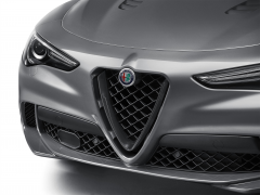 Front grill insert with ''V'' In Miron Lucido For Quadrifoglio Version