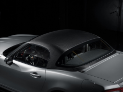 Carbon fiber hard top - 124 Spider Abarth