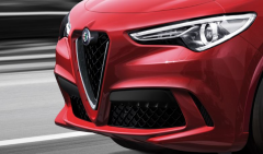 Front Grille With Carbon Insert